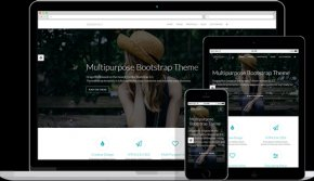 Dragonfly business responsive theme