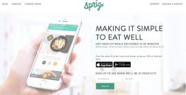 Ecommerce Website Design - Sprig