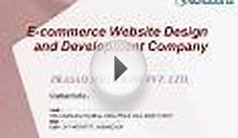 Ecommerce Website Design and Development Company Delhi - India