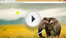 How to create Template Layout Responsive Web Design Class 6