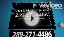 St. Catharines – Web Design Services | White Shark Media