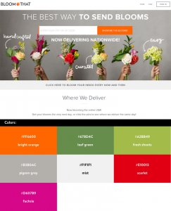 Website Color Schemes —Bloom That