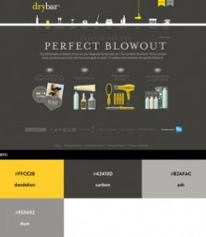 Website color schemes - Drybar