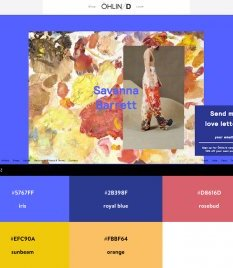 Website Color Schemes - oHLIN-D